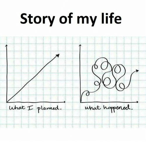 Life, Story of My Life, and Story: Story of my life  what I planned  what happened
