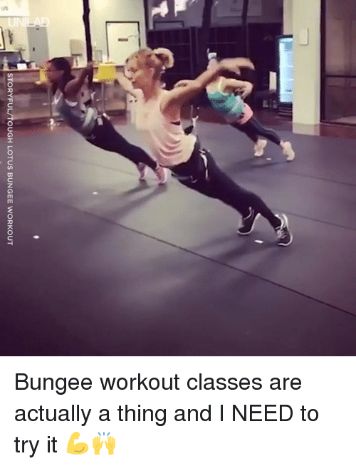 Dank, Lotus, and Tough: STORYFUL/TOUGH LOTUS BUNGEE WORKOUT Bungee workout classes are actually a thing and I NEED to try it 💪🙌