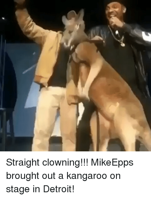 Detroit, Memes, and 🤖: Straight clowning!!! MikeEpps brought out a kangaroo on stage in Detroit!