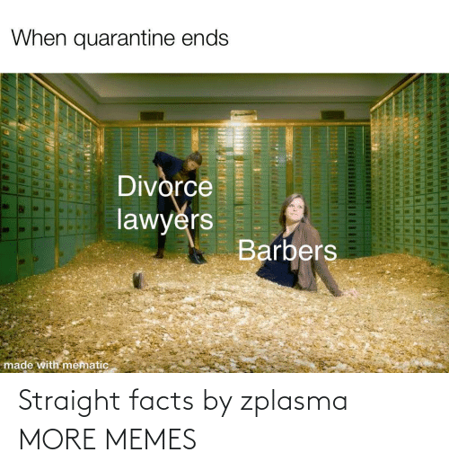 Facts: Straight facts by zplasma MORE MEMES
