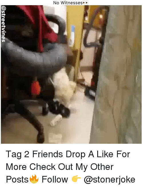 Friends, Memes, and 🤖: @streetvines Tag 2 Friends Drop A Like For More Check Out My Other Posts🔥 Follow 👉 @stonerjoke