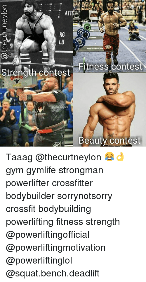 Memes, 🤖, and Fitnesse: Strength contest  pn Boyles  Fitness Contest  Beauty contest Taaag @thecurtneylon 😂👌 gym gymlife strongman powerlifter crossfitter bodybuilder sorrynotsorry crossfit bodybuilding powerlifting fitness strength @powerliftingofficial @powerliftingmotivation @powerliftinglol @squat.bench.deadlift