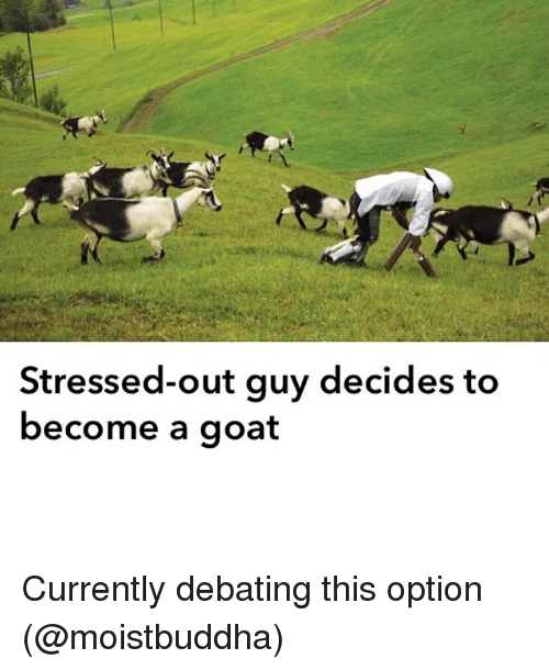 Funny Stressed Out Meme : Stressed out guy decides to become a goat currently