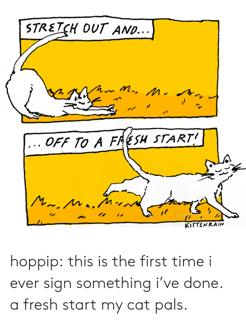 Fresh Start: STRETCH OUT AND...  OFF TO A FRESH START hoppip: this is the first time i ever sign something i've done. a fresh start my cat pals.