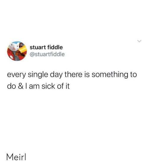 fiddle: stuart fiddle  @stuartfiddle  every single day there is something to  do & I am sick of it  > Meirl