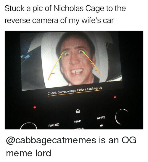 Meme, Radio, and Apps: Stuck a pic of Nicholas Cage to the  reverse camera of my wife's car  Check Surroundings Before Backing Up  APPS  MAP  RADIO  EnIA. @cabbagecatmemes is an OG meme lord