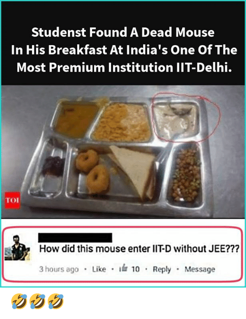 delhi: Studenst Found A Dead Mouse  In His Breakfast At India's One Of The  Most Premium Institution IIT-Delhi.  How did this mouse enter lIT-D without JEE???  3 hours ag0 Like 10 Reply Message 🤣🤣🤣