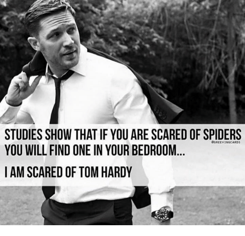 Memes, Scare, and Spider: STUDIES SHOW THAT IF YOU ARE SCARED OF SPIDERS  YOU WILL FIND ONE IN YOUR BEDROOM  I AM SCARED OF TOM HARDY