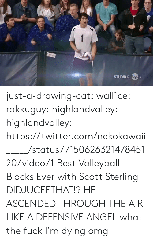 Rakkuguy: STUDIOC byutv just-a-drawing-cat:  wall1ce:  rakkuguy:  highlandvalley:  highlandvalley:  https://twitter.com/nekokawaii_____/status/715062632147845120/video/1  Best Volleyball Blocks Ever with Scott Sterling     DIDJUCEETHAT!?  HE ASCENDED THROUGH THE AIR LIKE A DEFENSIVE ANGEL   what the fuck  I'm dying omg