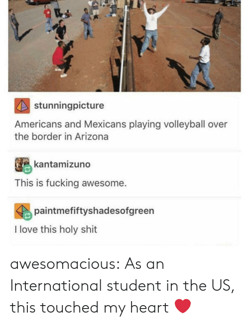 mexicans: stunningpicture  Americans and Mexicans playing volleyball over  the border in Arizona  kantamizuno  This is fucking awesome.  paintmefiftyshadesofgreen  I love this holy shit awesomacious:  As an International student in the US, this touched my heart ❤️