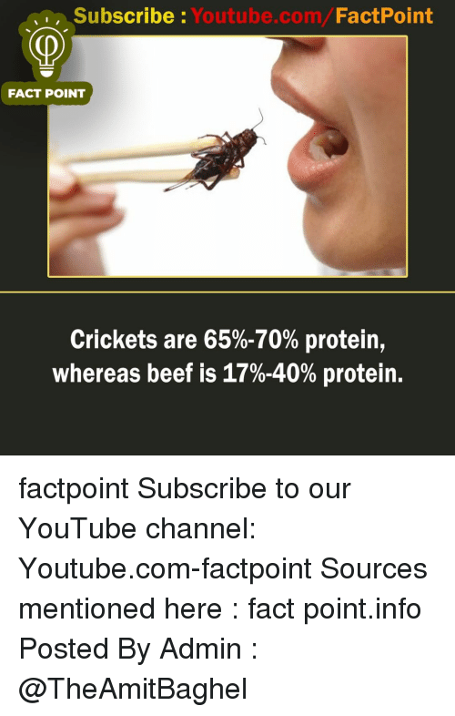 crickets: Subscribe Youtube.com/FactPoint  FACT POINT  Crickets are 65%-70% protein,  whereas beef is 17%-40% protein. factpoint Subscribe to our YouTube channel: Youtube.com-factpoint Sources mentioned here : fact point.info Posted By Admin : @TheAmitBaghel