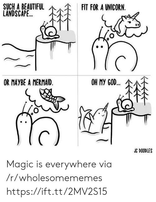 mermaid: SUCH A BEAUTIFUL  LANDSCAPE..  FIT FOR A UNICORN.  OR MAYBE A MERMAID.  OH MY GOD..  JC DOODLES Magic is everywhere via /r/wholesomememes https://ift.tt/2MV2S15