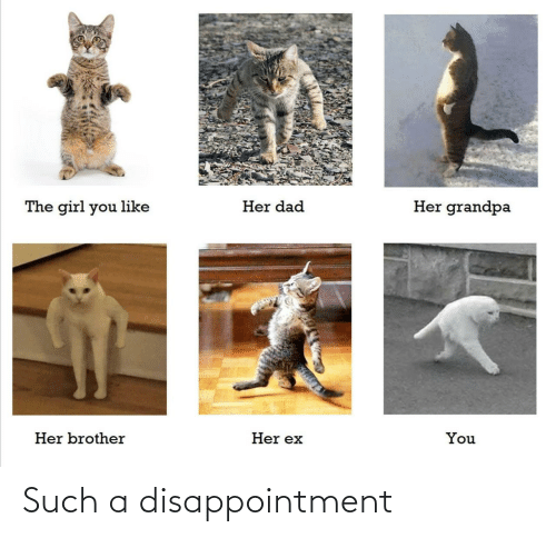 disappointment: Such a disappointment
