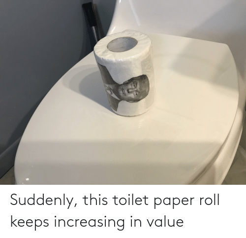 toilet-paper-roll: Suddenly, this toilet paper roll keeps increasing in value