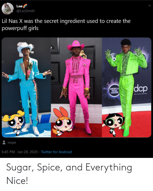 And Everything: Sugar, Spice, and Everything Nice!