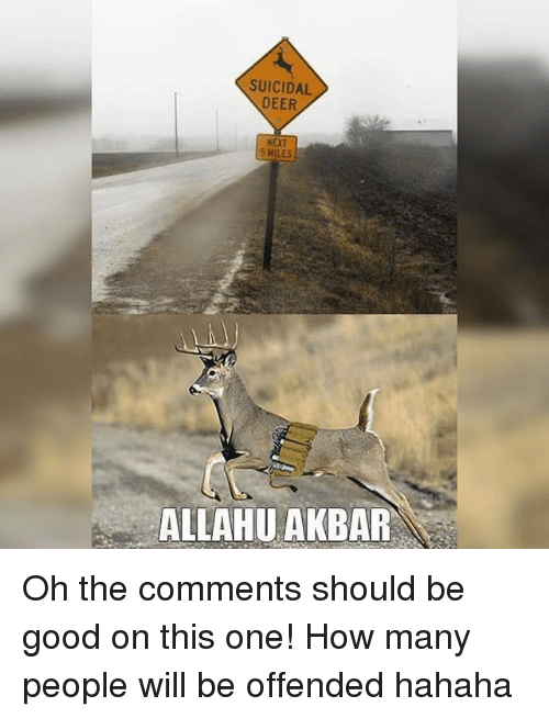 akbar: SUICIDAL  DEER  NEXT  5 MILES  ALLAHU AKBAR Oh the comments should be good on this one! How many people will be offended hahaha