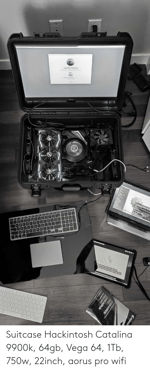 catalina: Suitcase Hackintosh Catalina 9900k, 64gb, Vega 64, 1Tb, 750w, 22inch, aorus pro wifi