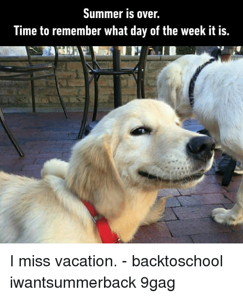 9gag, Memes, and Summer: Summer is over.  Time to remember what day of the week it is. I miss vacation. - backtoschool iwantsummerback 9gag