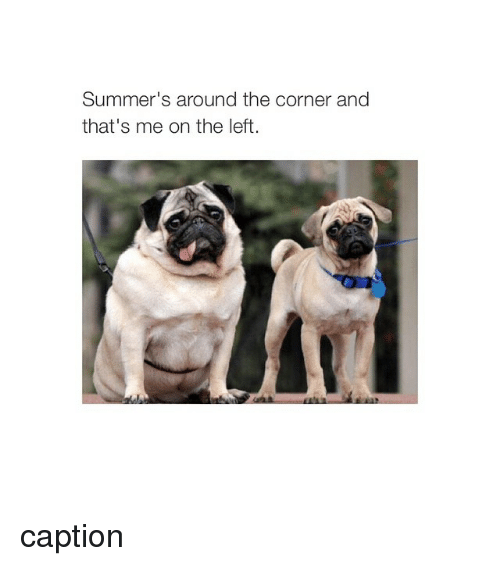 Girl Memes: Summer's around the corner and  that's me on the left caption