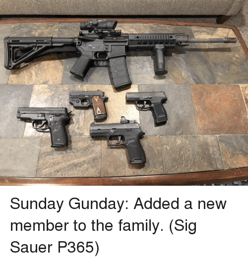 sig sauer: Sunday Gunday: Added a new member to the family. (Sig Sauer P365)