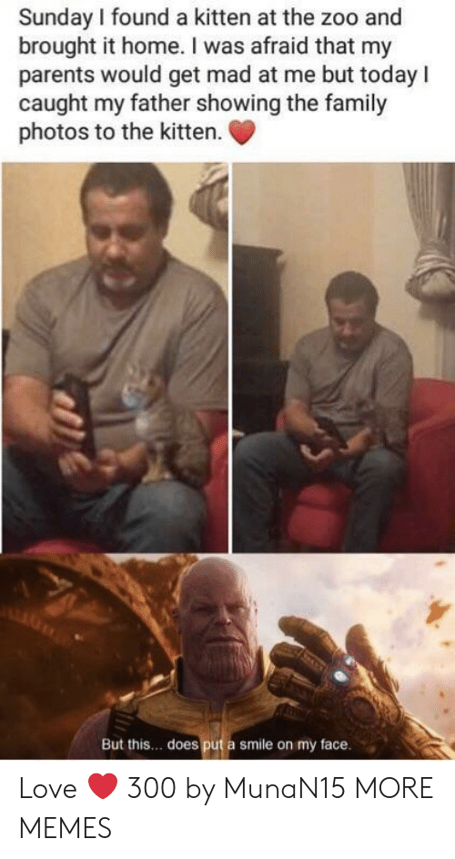 Family Photos: Sunday I found a kitten at the zoo and  brought it home. I was afraid that my  parents would get mad at me but todayI  caught my father showing the family  photos to the kitten  But this.. does put a smile on my face Love ❤️ 300 by MunaN15 MORE MEMES