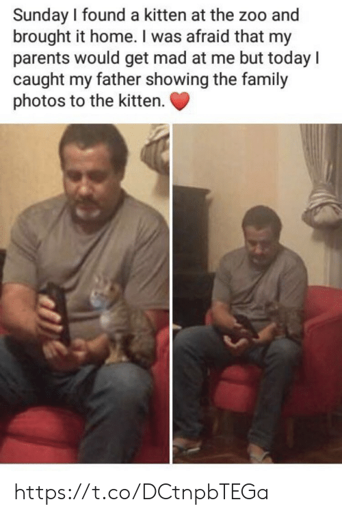 Family Photos: Sunday I found a kitten at the zoo and  brought it home. I was afraid that my  parents would get mad at me but today l  caught my father showing the family  photos to the kitten. https://t.co/DCtnpbTEGa