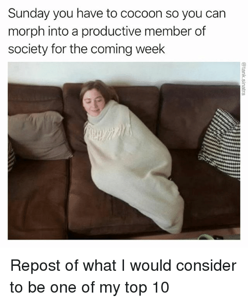 Funny, Sunday, and Can: Sunday you have to cocoon so you can  morph into a productive member of  society for the coming week Repost of what I would consider to be one of my top 10