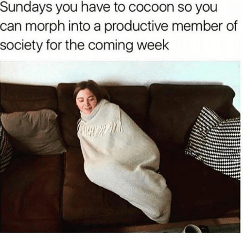 Morphe: Sundays you have to cocoon so you  can morph into a productive member of  society for the coming week