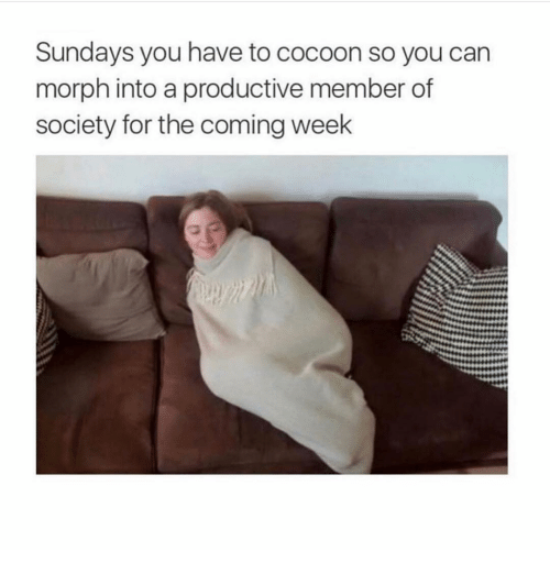 cocoon: Sundays you have to cocoon so you can  morph into a productive member of  society for the coming week