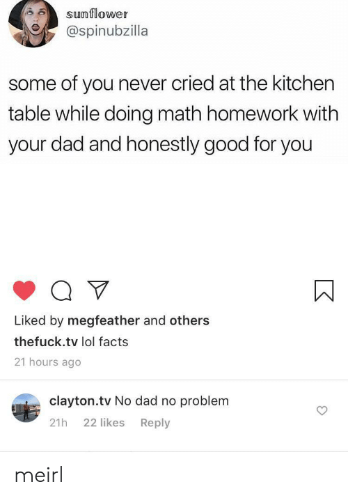No Dad: sunflower  @spinubzilla  some of you never cried at the kitchen  table while doing math homework with  your dad and honestly good for you  Liked by megfeather and others  thefuck.tv lol facts  21 hours ago  clayton.tv No dad no problem  22 likes  Reply  21h meirl