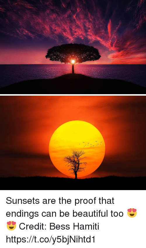 Beautiful, Memes, and 🤖: Sunsets are the proof that endings can be beautiful too 😍😍 Credit: Bess Hamiti https://t.co/y5bjNihtd1