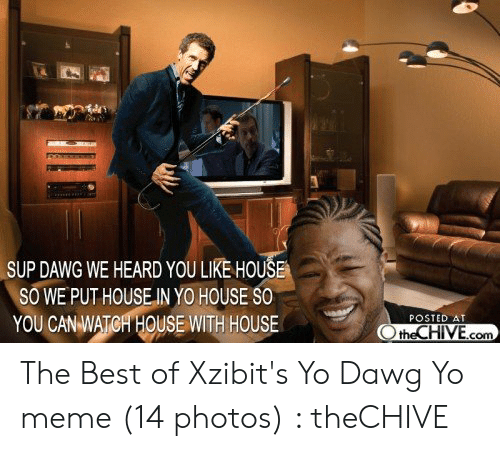 Posted At The Chive: SUP DAWG WE HEARD YOU LIKE HOUŠE  SO WE PUT HOUSE IN YO HOUSE SO  YOU CAN WATCH HOUSE WITH HOUSE  POSTED AT  the CHIVE.com The Best of Xzibit's Yo Dawg Yo meme (14 photos) : theCHIVE