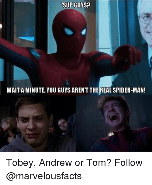 Memes, Spider, and SpiderMan: SUP GUYS?  WAIT A MINUTE, YOU GUYS ARENT THE REAL SPIDER-MAN! Tobey, Andrew or Tom? Follow @marvelousfacts