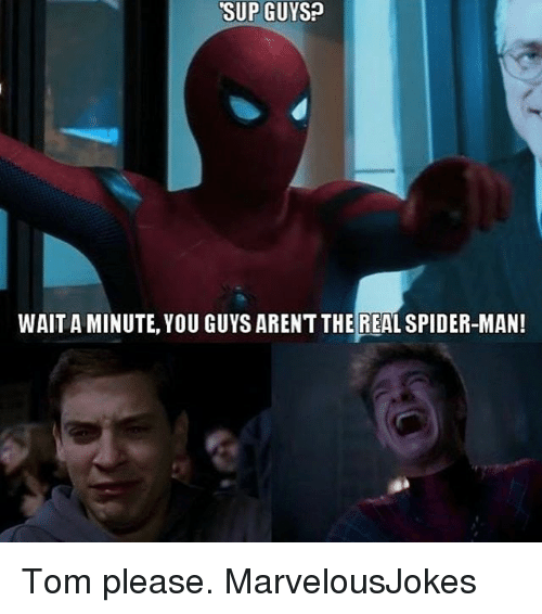 Memes, Spider, and SpiderMan: SUP GUYS?  WAIT A MINUTE, YOU GUYS ARENT THE REAL SPIDER-MAN! Tom please. MarvelousJokes