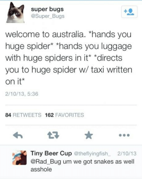 """huge spiders: super bugs  @Super_Bugs  welcome to australia. """"hands you  huge spider* """"hands you luggage  with huge spiders in it """"directs  you to huge spider w/ taxi written  on it  2/10/13, 5:36  84 RETWEETS 162 FAVORITES  Tiny Beer Cup @theflyingfish 2/10/13  @Rad_Bug um we got snakes as well  asshole"""