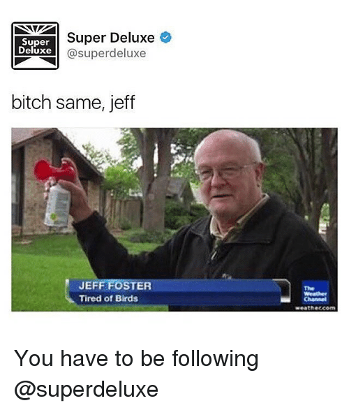 jeff foster: Super  Deluxe  Super Deluxe  @superdeluxe  bitch same, jeff  JEFF FOSTER  Tired of Birds  The  Weath  Channel  weathetcom You have to be following @superdeluxe