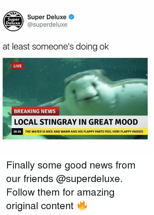 contention: Super  Deluxe  Super Deluxe +  xe@superdeluxe  at least someone's doing ok  LIVE  BREAKING NEWS  LOCAL STINGRAY IN GREAT MOOD  18:30  THE WATER IS NICE AND WARM AND HIS FLAPPY PARTS FEEL VERY FLAPPY INDEED Finally some good news from our friends @superdeluxe. Follow them for amazing original content 🔥