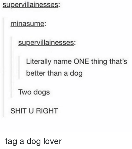 dog lovers: supervillainesses:  minasume  supervillainesses  Literally name ONE thing that's  better than a dog  Two dogs  SHIT U RIGHT tag a dog lover