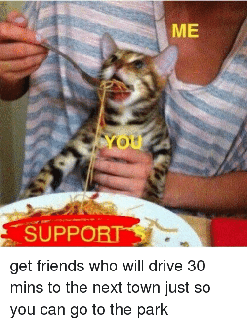 Friends, Memes, and Drive: SUPP  ME get friends who will drive 30 mins to the next town just so you can go to the park