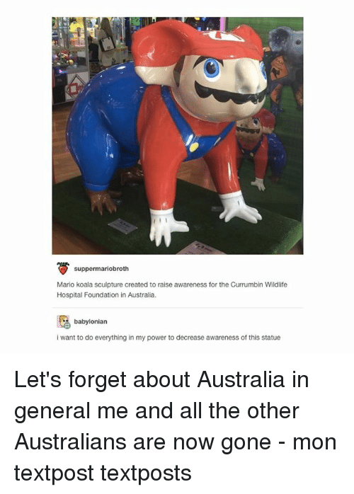 Babylonian: suppermariobroth  Mario koala sculpture created to raise awareness for the Currumbin Wildlife  Hospital Foundation in Australia.  babylonian  i want to do everything in my power to decrease awareness of this statue Let's forget about Australia in general me and all the other Australians are now gone - mon textpost textposts