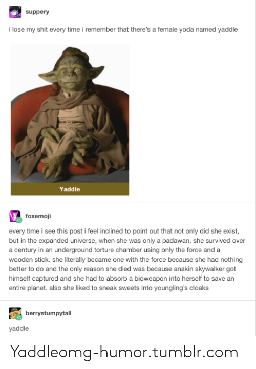 Yaddle: suppery  i lose my shit every time i remember that there's a female yoda named yaddle  Yaddle  foxemoji  every time i see this post i feel inclined to point out that not only did she exist  but in the expanded universe, when she was only a padawan, she survived over  a century in an underground torture chamber using only the force and a  wooden stick. she literally became one with the force because she had nothing  better to do and the only reason she died was because anakin skywalker got  himself captured and she had to absorb a bioweapon into herself to save an  entire planet. also she liked to sneak sweets into youngling's cloaks  berrystumpytail  yaddle Yaddleomg-humor.tumblr.com