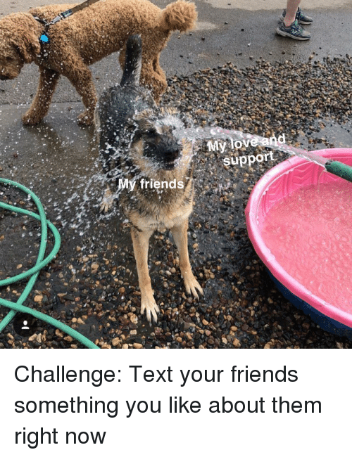 Friends, Text, and Challenge: support  My friends Challenge: Text your friends something you like about them right now