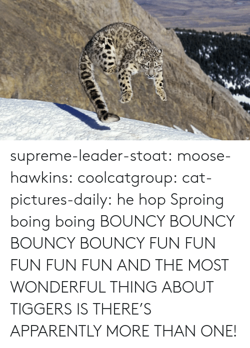 boing: supreme-leader-stoat: moose-hawkins:  coolcatgroup:  cat-pictures-daily: he hop  Sproing boing boing    BOUNCY BOUNCY BOUNCY BOUNCY FUN FUN FUN FUN FUN  AND THE MOST WONDERFUL THING ABOUT TIGGERS IS THERE'S APPARENTLY MORE THAN ONE!