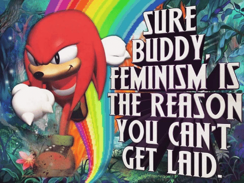 Feminism: SURE  BUDDY  FEMINISM S  THE REASON  YOU CANT  GET LAID