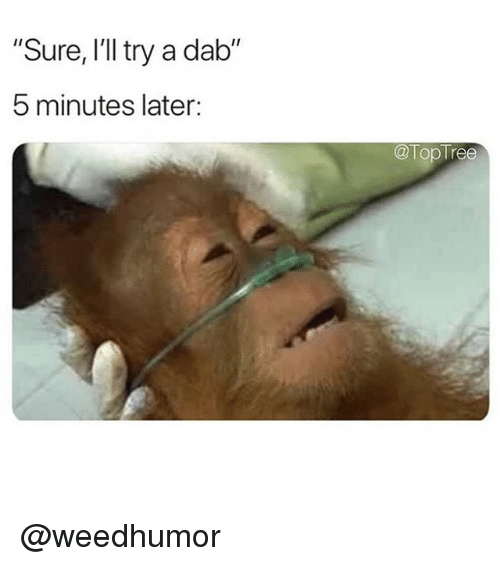 """Memes, 🤖, and Dab: """"Sure, I'll try a dab""""  5 minutes later:  @TopTree @weedhumor"""