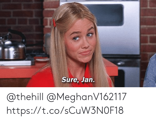 Sure Jan: Sure, Jan. @thehill @MeghanV162117 https://t.co/sCuW3N0F18