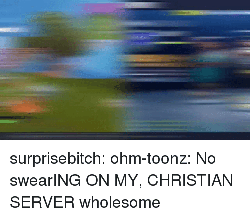 Tumblr, Blog, and Http: surprisebitch:  ohm-toonz: No swearING ON MY, CHRISTIAN SERVER wholesome