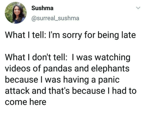 Being Late: Sushma  @surreal_sushma  What I tell: I'm sorry for being late  What I don't tell: I was watching  videos of pandas and elephants  because I was having a panic  attack and that's because I had to  come here