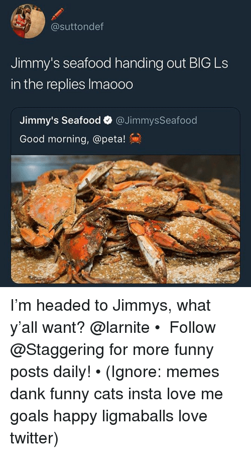 Cats, Dank, and Funny: @suttondef  Jimmy's seafood handing out BlG Ls  in the replies Imaooo  Jimmy's Seafood @Jimmys Seafood  Good morning, @peta! I'm headed to Jimmys, what y'all want? @larnite • ➫➫➫ Follow @Staggering for more funny posts daily! • (Ignore: memes dank funny cats insta love me goals happy ligmaballs love twitter)