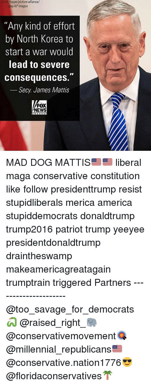 """America, Memes, and News: Sven Hoppe/picture-alliance/  dpa/AP Images  """"Any kind of effort  by North Korea to  start a war would  lead to severe  consequences.  Secy James Mattis  FOX  NEWS  hannol MAD DOG MATTIS🇺🇸🇺🇸 liberal maga conservative constitution like follow presidenttrump resist stupidliberals merica america stupiddemocrats donaldtrump trump2016 patriot trump yeeyee presidentdonaldtrump draintheswamp makeamericagreatagain trumptrain triggered Partners --------------------- @too_savage_for_democrats🐍 @raised_right_🐘 @conservativemovement🎯 @millennial_republicans🇺🇸 @conservative.nation1776😎 @floridaconservatives🌴"""